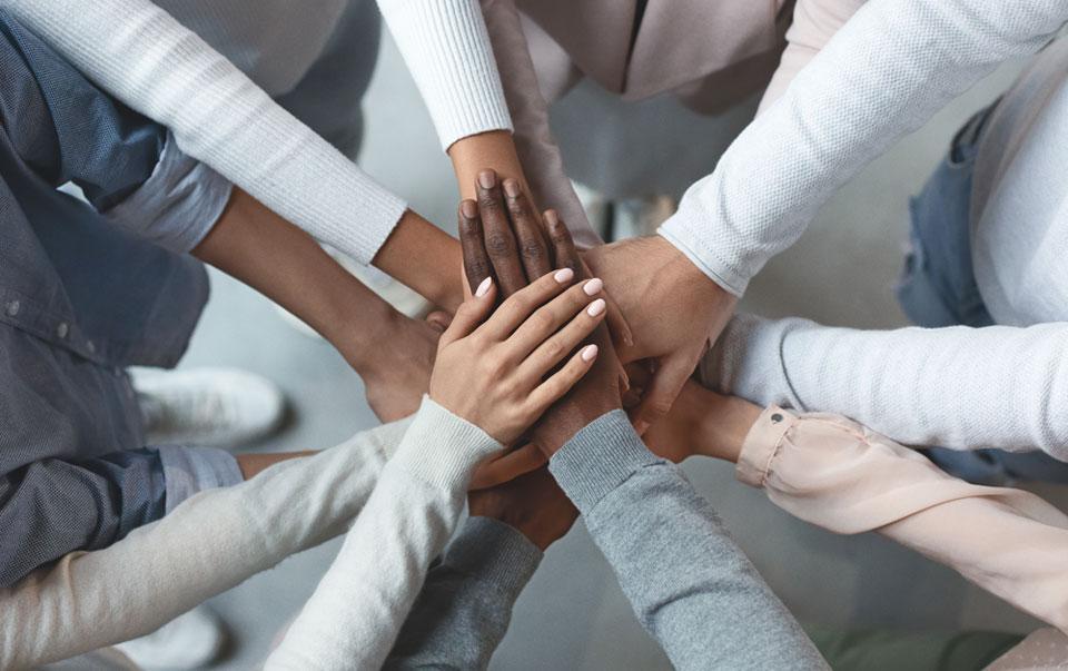 Hamilton Reserve Bank Teamwork